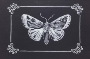 butterfly_chalk